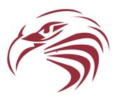 New Eagle Raptor